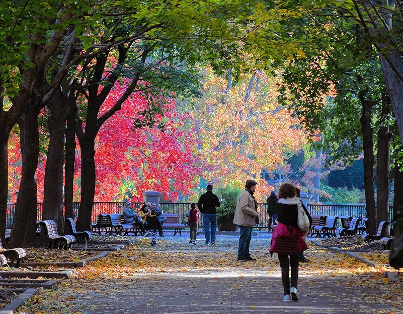 Gens qui marchent sur une promenade à Montréal à l'automne.
