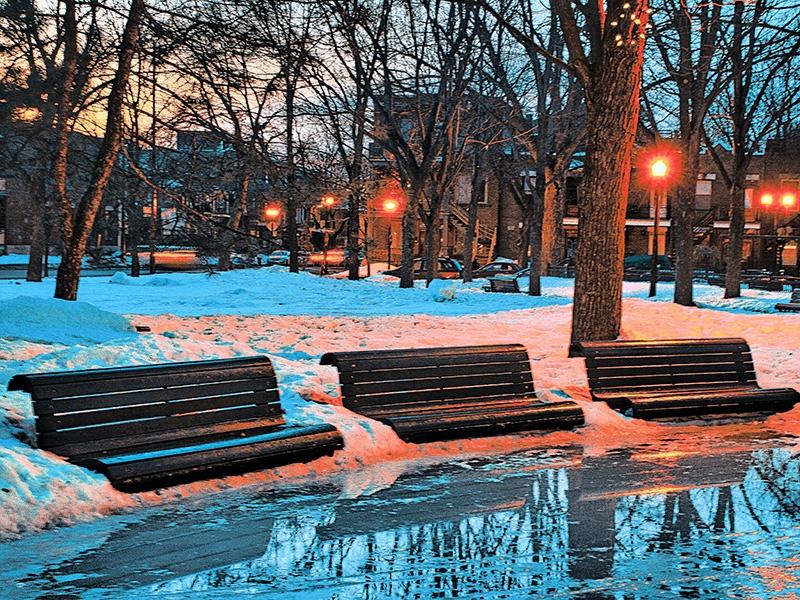 Parc en hiver avec de l'eau devant les bancs en bois.